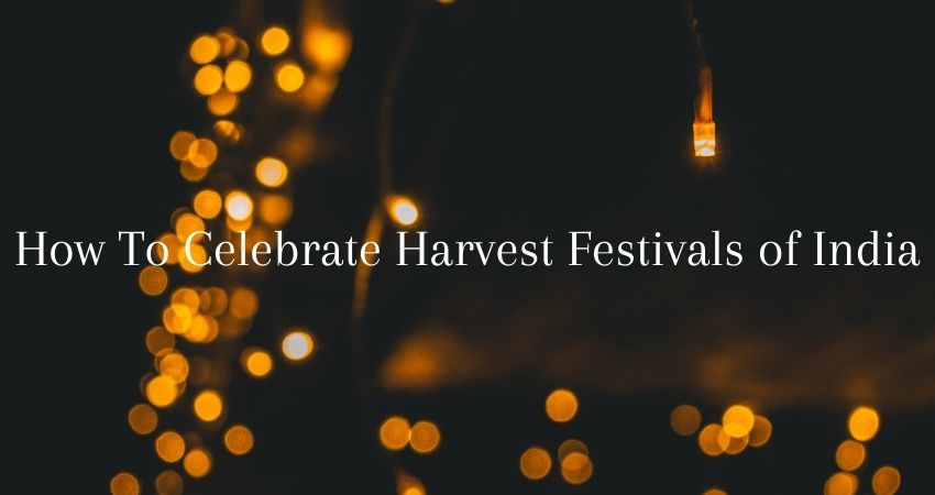 How To Celebrate Harvest Festivals of India