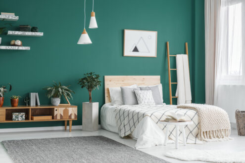 Green color in guest room