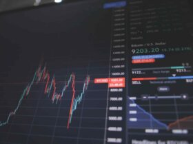 Things to Know When Investing in the Stock Market